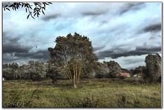 Temps d'automne