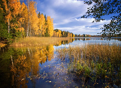 Autumn Colors (Krogen) Tags: autumn oktober norway landscape norge norwegen noruega scandinavia akershus hst romerike krogen landskap noorwegen noreg ullensaker skandinavia blueribbonwinner nordbytjernet olympuse400 damniwishidtakenthat zuikodigital918mm