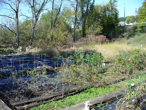 2008-10-16 - The Garden - 0001