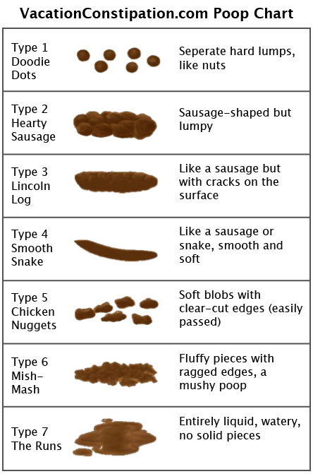 The Poop Chart Vacation Constipation