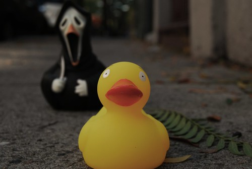 Scream Duck at it again. by digicolleen