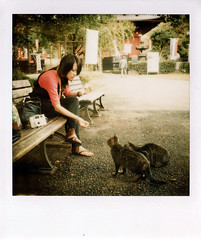 Lovely picnic morning! (Twiggy Tu) Tags: trip morning film japan cat polaroid tokyo 600 2008 twiggy uenopark  sx70sonar photobybrad aplusphoto