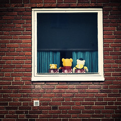 The Watcher (koinis) Tags: bear 3 brick window wall canon john square 50mm three teddy bjrn explore 18 watcher bamse the sqr vrldens koinberg koinis snllaste