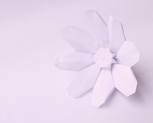 Origami Anemone Flower