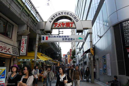 Tokyo Tours: A look at the city