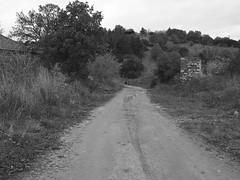 Μαυροράχη........ (Zopidis Lefteris 2008) Tags: village hellas greece macedonia thessaloniki lefty lefteris eleftherios χωριό ελλάδα zop θεσσαλονίκη zopidis zopidislefteris leyteris ελλάσ μακεδονία ζωπίδησ ελευθέριοσ λευτέρησ ζωπίδησλευτέρησ νομόσθεσσαλονίκησ eleytherios λεφτέρησ μαυροράχη mayroraxi mauroraxi mavroraxi mabroraxi