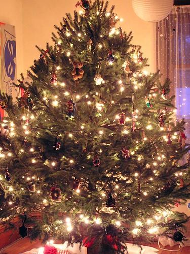 Our massive Christmas Tree