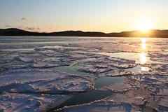 Evening on Ice (Sharon Mollerus) Tags: winter ontario canada lakesuperior cloudbay 20081215cbimg1019