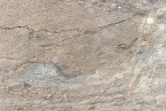 Peru: Huarmey (Ancash) - Jurassic rock