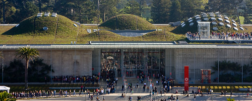 California Academy of Sciences Green Roof
