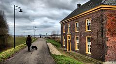 yellow windows (Pascal Lagarde) Tags: dog house walk dike druten