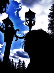 looking up (liz chaddock) Tags: blue light black tree dark person looking personal away brach