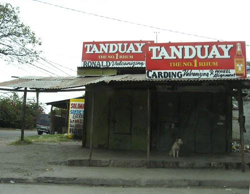 bantay at tanduay