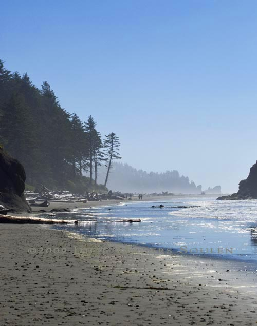 seascape of the wild beach at Olympic National Park coastline at Second Beach