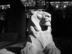 The Lion at Night (stuartpaterson) Tags: door new old city uk bw white black colour tree art window monument sepia architecture night buildings river square design scotland riverclyde clyde george memorial war day britain glasgow lion style georgesquare ornament granite present civic past sq chambers ornamentation citychambers rememberence furute glasgowon