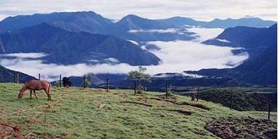Rosaspamba, Ecuador