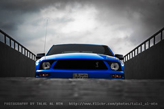 BEWARE (Talal Al-Mtn) Tags: blue ford cobra rig kuwait gt fordmustang  talal kuwaitcity supercharged svt q8 fordgt dyno gt500 kwt shelbygt500 mustangcobra mustangshelby shlby   rigshot  lm10 fordmustangshelby almtn     shelby2008 mustanginkuwait talalalmtnphotography photographybytalalalmtn  mustangsupercharged shelbyinkuwait talalalmetn mustanggtsupercharged almetn  quottalal almtnquot shelbysupercharge streetracingkuwait