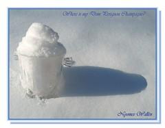 Beating the Winter Blues (nyomee wallen) Tags: blue winter white snow onwhite beating blueribbonwinner winterblues mywinners champagnecooler aplusphoto ysplix theperfectphotographer goldstaraward