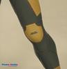 Gray fox, Cyborg Ninja Metal gear solid (qortubee) Tags: metalgear grayfox metalgearsolid cyborgninjagrayfox cyborgninja metalgearsnake stealthninja
