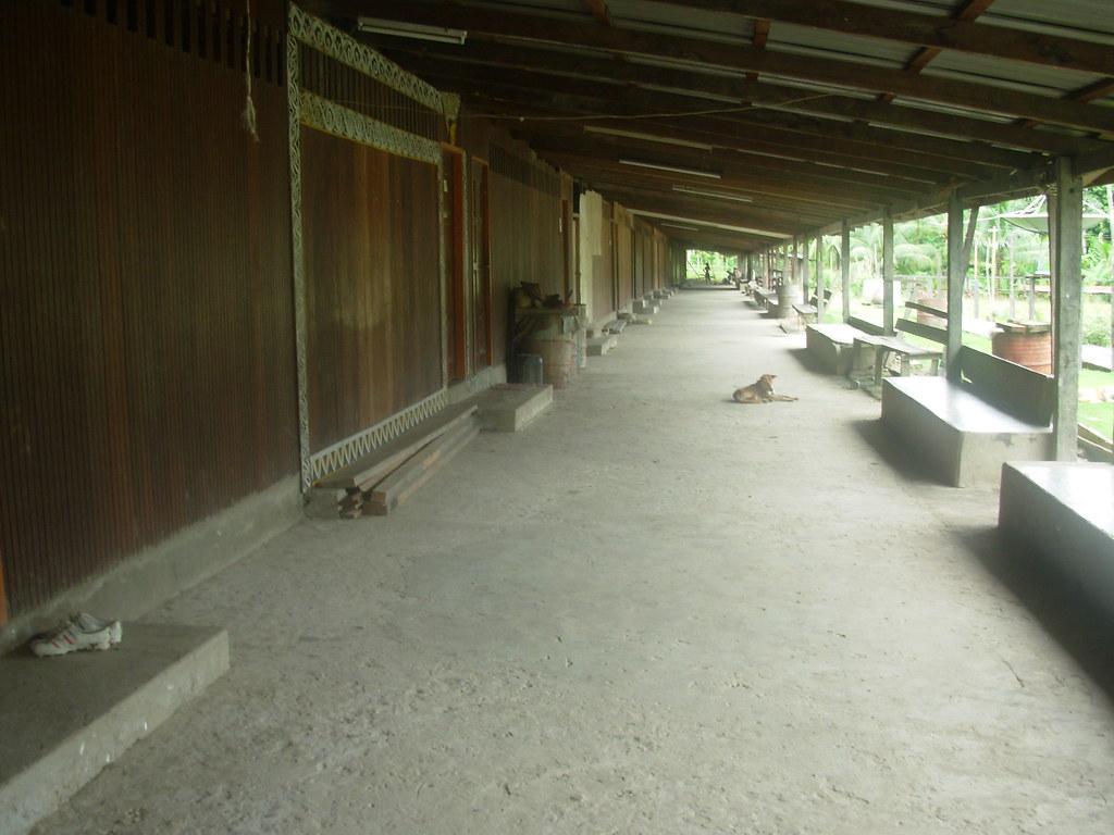 Sarawak-Belaga-LHouses (167)