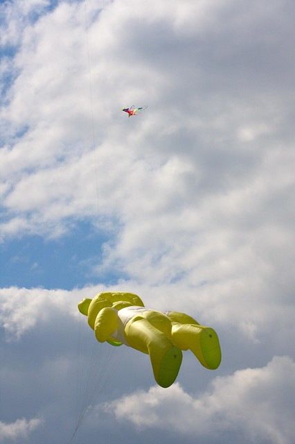Kite Festival - Flying Bear