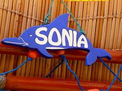 Cevichería Sonia