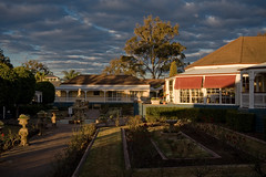 Sebel courtyard sunset (toolmantim) Tags: sunset roses courtyard huntervalley sebel sebelkirktonpark