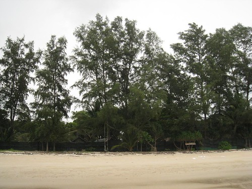 Bamboo Bungalows - just barely visible behind a fence to block windswept sand