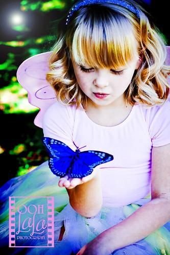 {butterfly secrets}