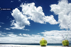 Sombra e gua (de coco) Fresca (Omar Junior) Tags: cloud azul brasil cores geotagged agua do foto cu fruta coco bahia nuvens salvador ponta clube sfc forte humaita salvadorba humait salvadorfotoclube pontadohumait pontadohumaitsalvadorba geo:lat=12928658 geo:lon=3851959