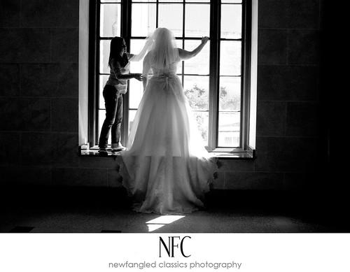 shelly bride
