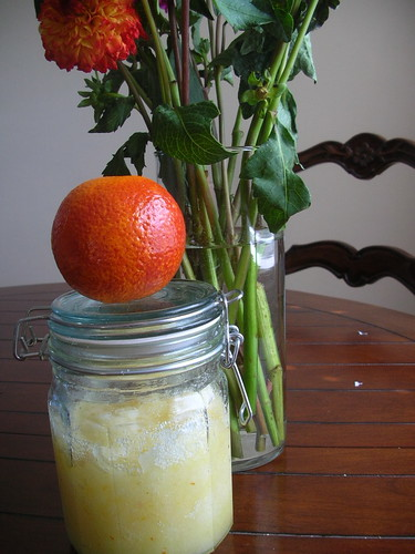 Blood Orange Sugar Scrub
