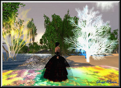 ~ Garden of Eden ~ (sonja_pinion) Tags: gardenofeden bettemidler soe fpc blueribbonwinner therose bej fineartphotos golddragon abigfave platinumphoto anawesomeshot ultimateshot digitalphotoart flickrdiamond theunforgettablepictures theperfectphotographer goldstaraward flickrestrellas sonjapinion kunstplatzlinternational colorsinourworld thecelebrationoflife