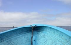 BAHA PHOTOS (roberthuffstutter) Tags: vortex flying tigers notmyphoto huffstutter