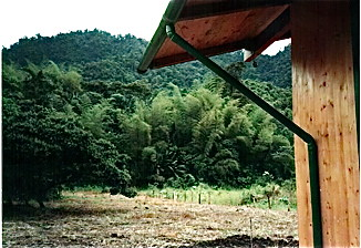 mindo-ecuador-real-estate-view