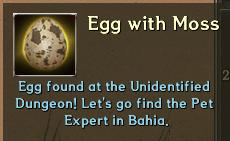 Pet EggWithMoss
