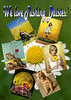 "Pushing Daisies mail campaign - 4.25x6"" postcard"