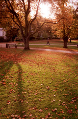 93-24 Forbury Garden Autumn (_pictures) Tags: reading centuria100 1vhs forburygarden