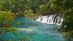Falling into the Lake (Augapfel) Tags: china trees water forest landscape waterfall scenery falls jiuzhaigou