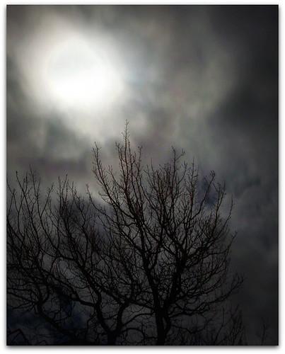 November12th Moon