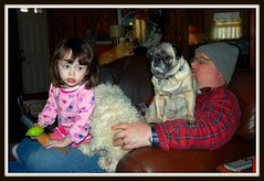 Fully Loaded (IrishLace82) Tags: family sitting grandfather pug lap granddaughter orangetabby brownleather bishon watchingamovie