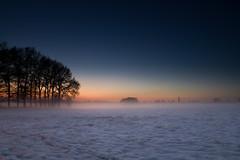 [フリー画像] [自然風景] [雪景色] [朝日/朝焼け] [樹木の風景]       [フリー素材]