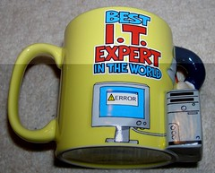 Best IT Expert In The World