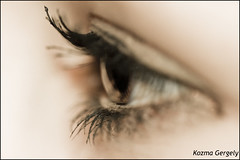 (kozma_gergely) Tags: brown color macro sepia canon eyes hungary dof 100mm makro falsh gyr canonef100mmf28macro 400d worldbest platinumphoto theunforgettablepicture dragondaggerphoto