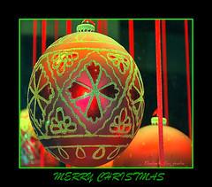 CHRISTMAS 7 (Elisabeth Gaj) Tags: christmas explore notaterrorist colorphotoaward elisabethgaj 100commentgroup bestevercompetitiongroup bestevergoldenartists