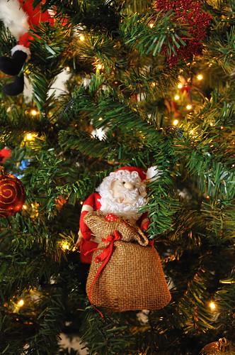 Christmas Santa Ornament. ISO 2800. DSC_2647