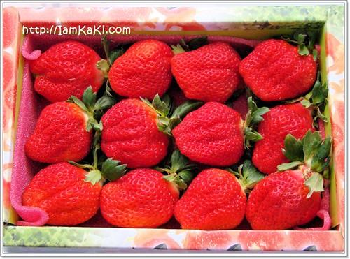 strawberryBOX12