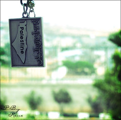 I won't forget Palestine (Areen Natsheh) Tags: trees green back keyring palestine gray victory medal wont returning forget    i