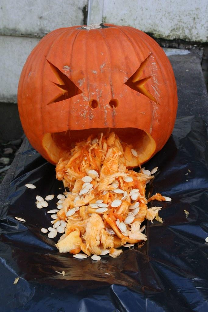 pumpkin throwing up seeds