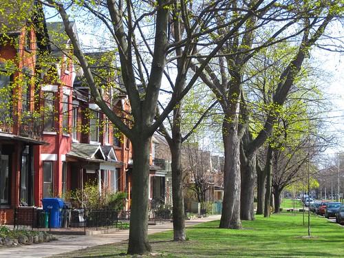 Toronto bay-and-gable houses